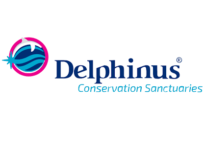 Delphinusworld Coupon Codes